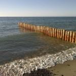 Wicie morze