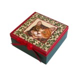 szkatułka z motywem kota